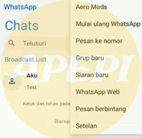 Kelebihan Dan Kekurangan Aplikasi WhatsApp Aero